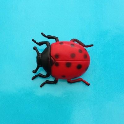brooch ladybird
