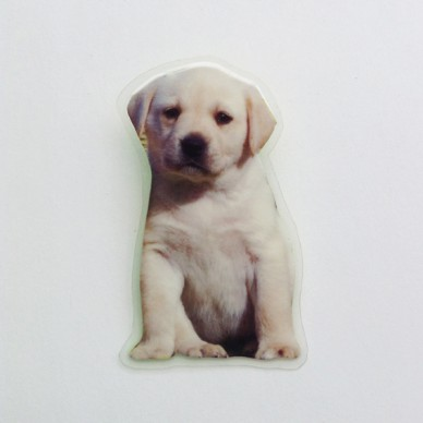 brooch lam dog