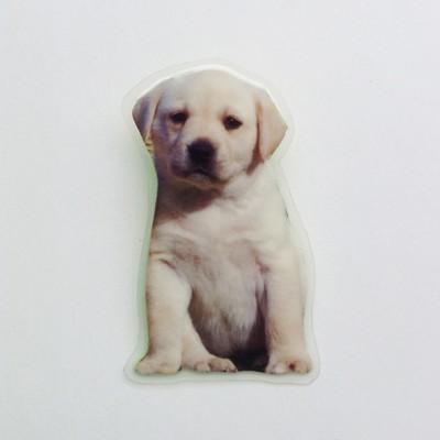 brooch lam dog