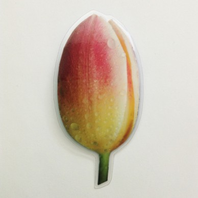 brooch lam tulip color