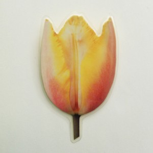 brooch lam tulip colors