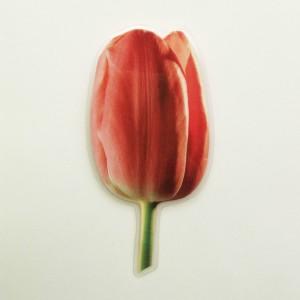 brooch  tulip darkpink