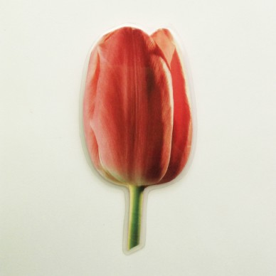 brooch  tulip darkpink