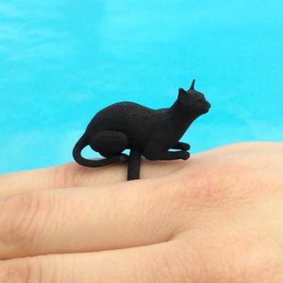 ring cat lying black