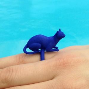 ring cat lying blue