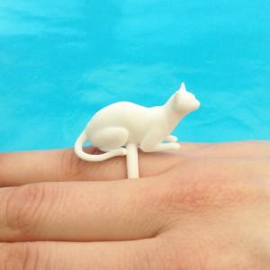 ring cat lying white