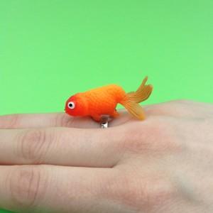 ring fish orangegreen