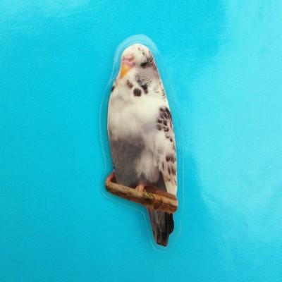 brooch bird whitegrey