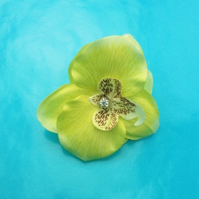 ring flower orchid yellow 72