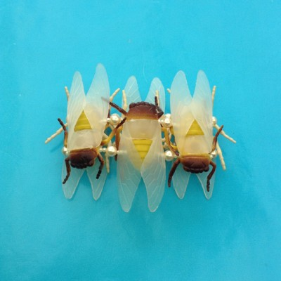 bracelet cicade 72