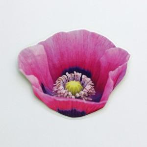 brooch lam pink poppy 72