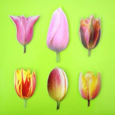 brooch tulip - broche tulp