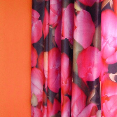 curtain tulips