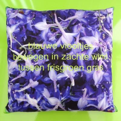 cushion delphinium 72 kopie