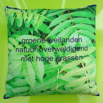 cushion leaves 72 kopie