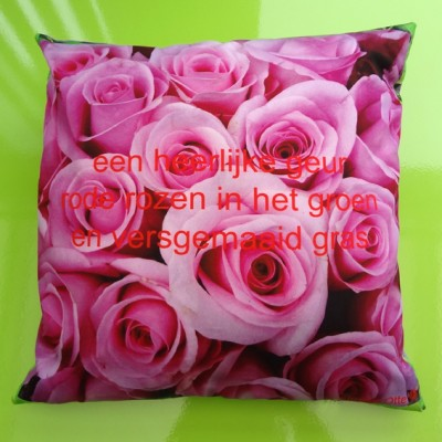 cushion roses pink 72 kopie