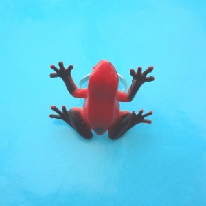 ring frog red 72