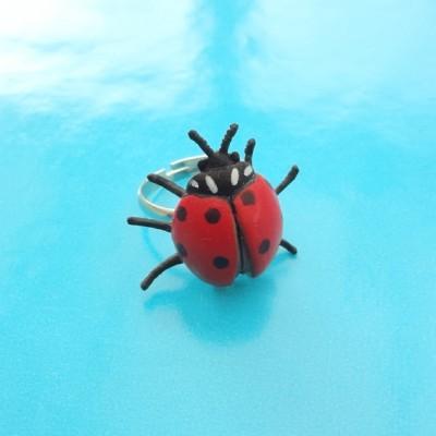 ring ladybird 72