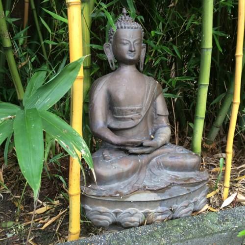 boeddha tuin 3 72