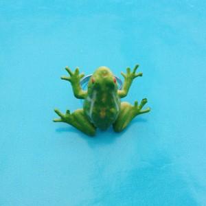 ring frog green 72