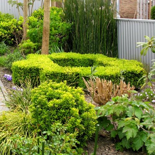 tuin zijkant mandala vk 72